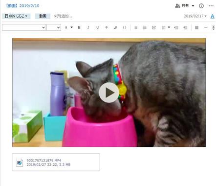 Evernoteで動画を管理